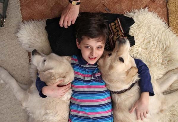 Мальчик проходит реабилитацию в центре канистерапии в Москве