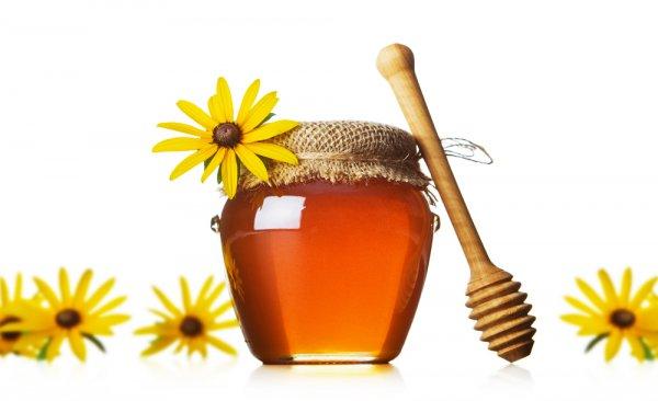 Мед возвращает организму молодость