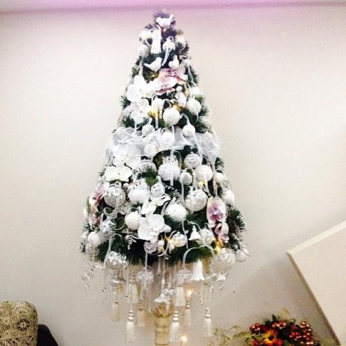 Асмус и Харламов похвастались новогодней красавицей