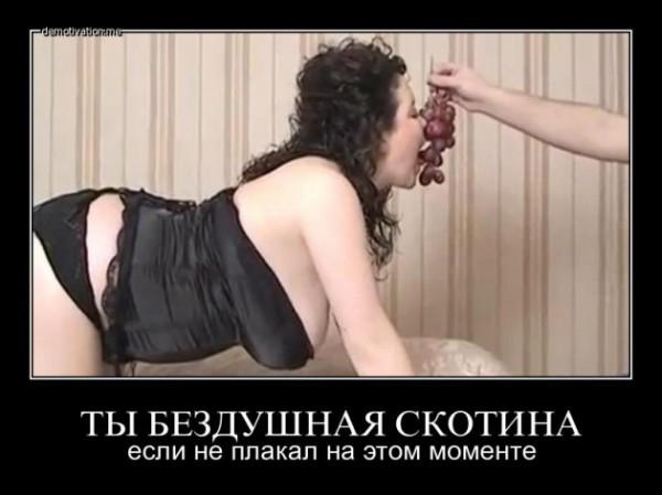 проститутки с видео клипом