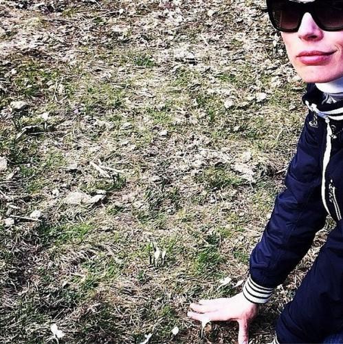 Ольга Фреймут поделилась фотографией альпийских крокусов