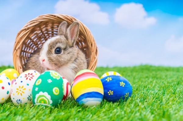 Яйца на Пасху: фото
