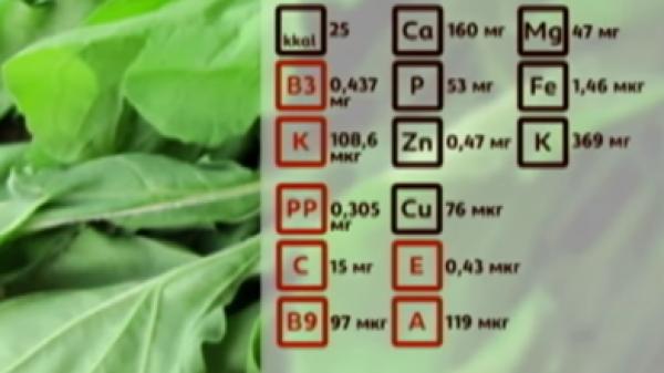 Содержание питательных веществ в 100 граммах рукколы