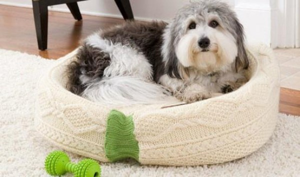 Dog Bed From Old Jumper