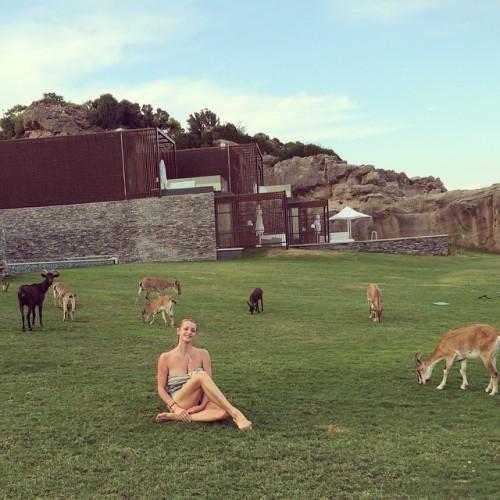 Анастасия Волочкова показала фото с козлятами
