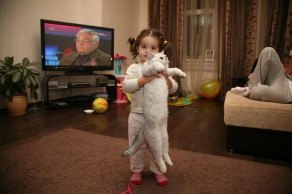 Дочь Маруся с котом