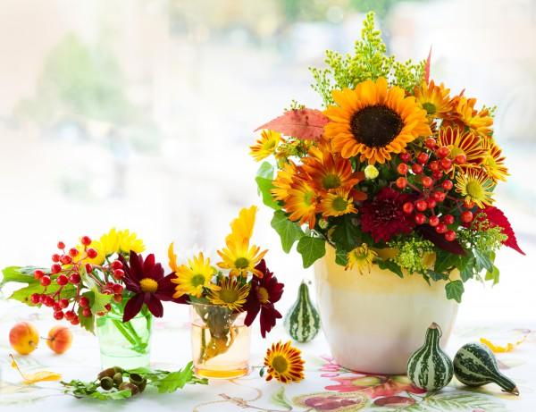 Осенние красивые цветы картинки