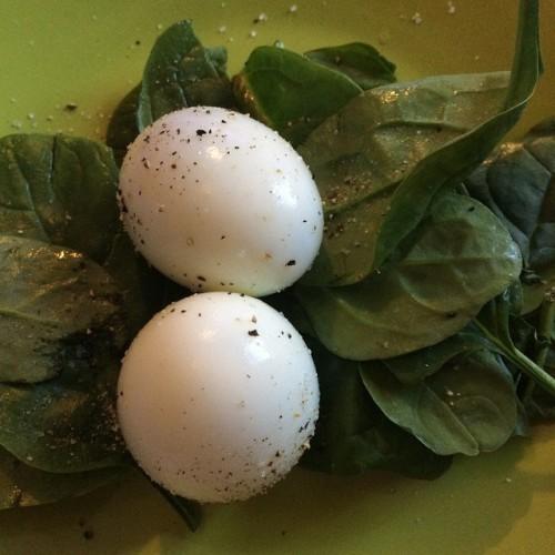 Яйца - полезный диетический продукт