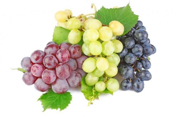 Темный виноград лучше хранится