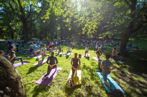 Практика хатха йоги делает здоровым тело
