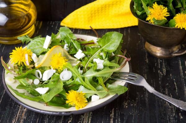 Весенняя кухня: ТОП-10 вкуснейших салатов
