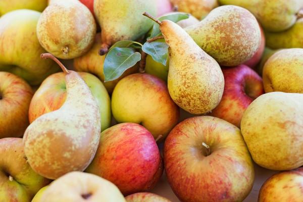 Яблоки богаты клетчаткой