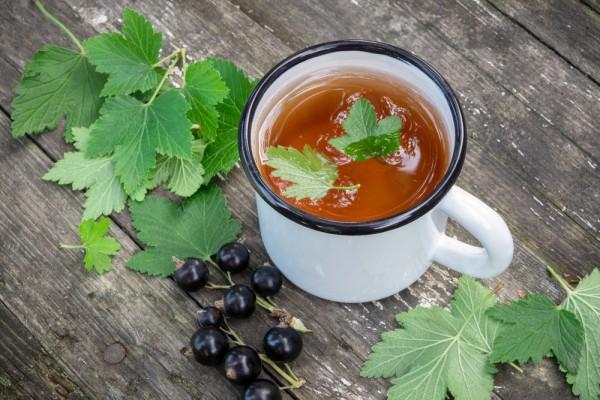 Что приготовить на Ивана Купала: Травяной чай из листьев черной смородины