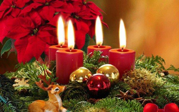 Красный, золотый и зеленый - традиционные новогодние и рождественские цвета