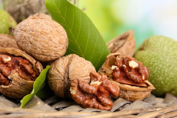 Грецкие орехи укрепляют сосуды