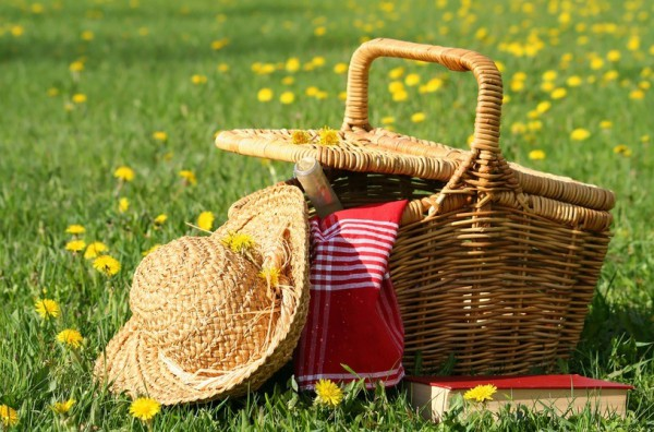 Заранее продумай, что взять на пикник