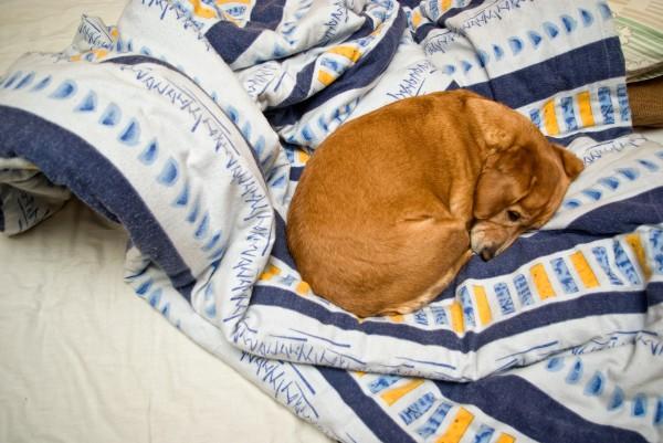 Зачем заправлять кровать