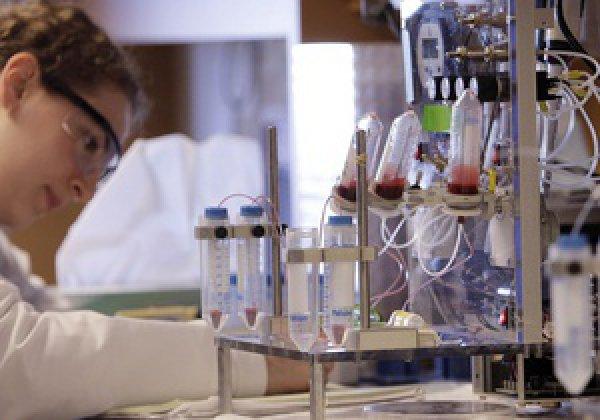 Ученые думают, что эндотелиальные клетки в большом количестве начинают отслаиваться от внутренних стенок сосудов за две недели до инфаркта