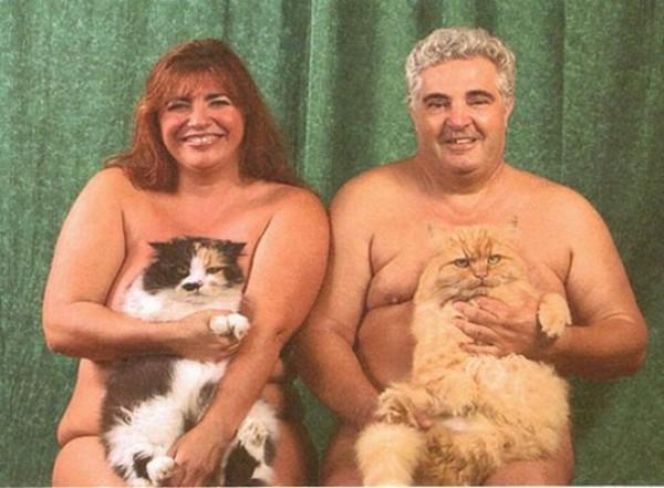 Бедные котики