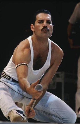 Фредди Меркьюри Freddie Mercury (1946–1991), британский музыкант и вокалист группы Queen.