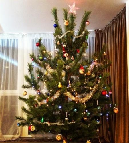 Ани Лорак показала свою новогоднюю елку