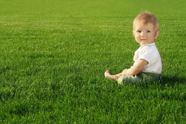 Помни, клещи живут в высокой траве
