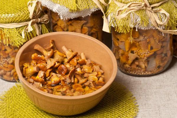 Рецепты пирогов с яблоками в домашних условиях с фото