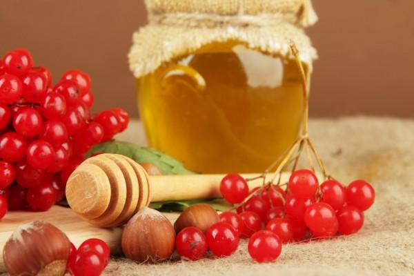 Калина полезна в сочетании с медом
