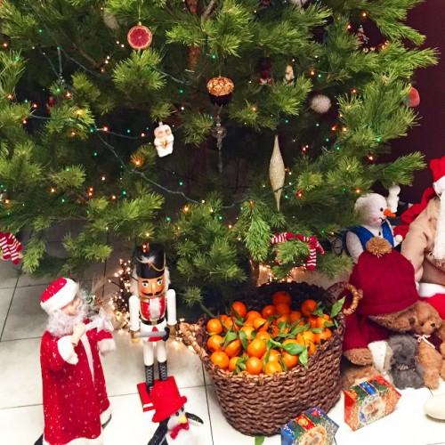 Музыкант Сергей Жуков показал свою новогоднюю елку