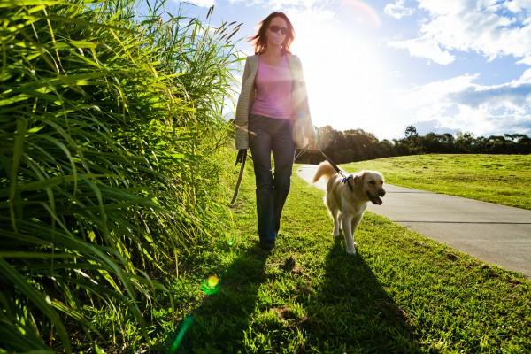 Насколько полезны пешие прогулки