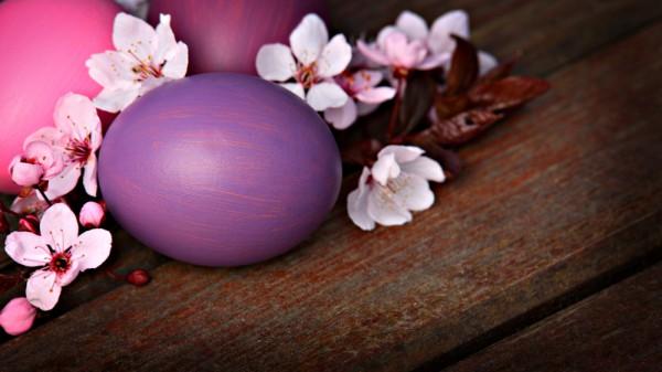 Первый цвет украсит любой пасхальный стол.