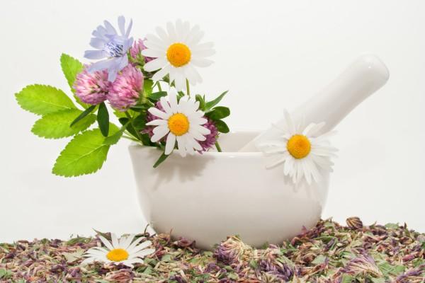 Народная медицина при варикозном расширении вен