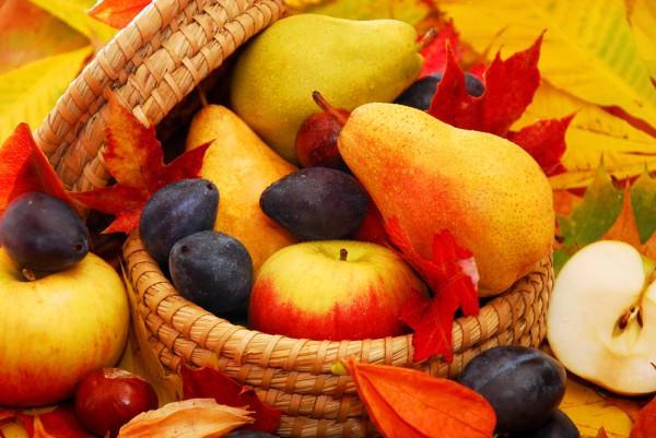 Сентябрьские продукты