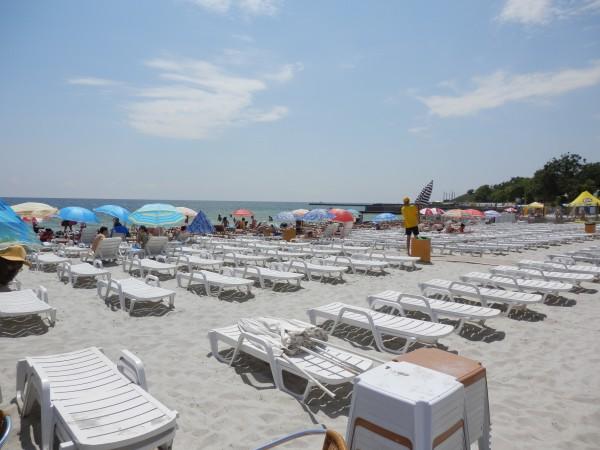 Пляжи Одессы: Чайка
