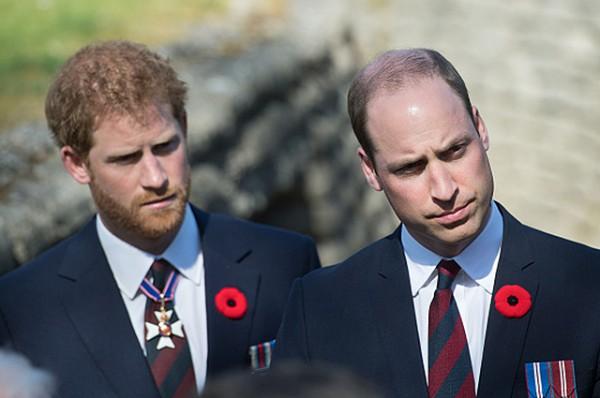Принц Гарри и принц Уильям