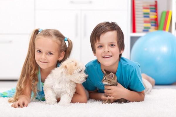 Как выбрать ребенку животное