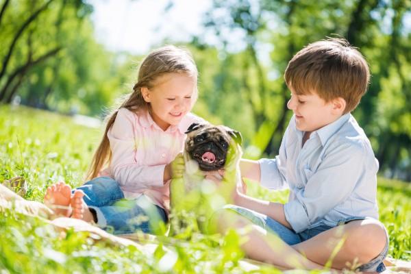 5 причин, по которым ребенку нужен питомец