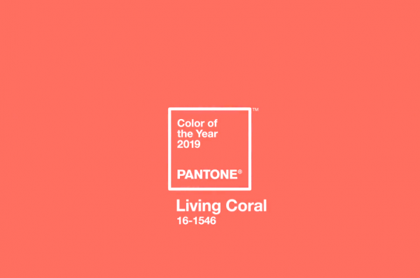 Pantone назвал самый модный цвет 2019 года