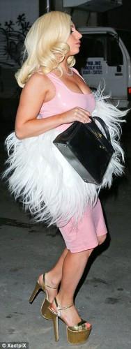 Lady GaGa выпила лишнего на вечеринке с друзьми