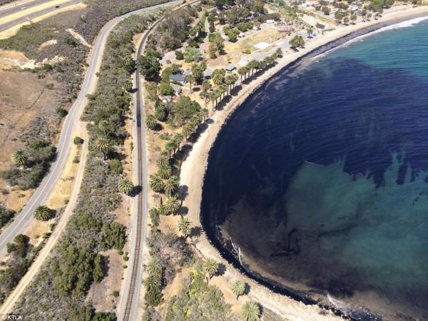 Личный пляж Джоли и Питта загрязнен нефтью