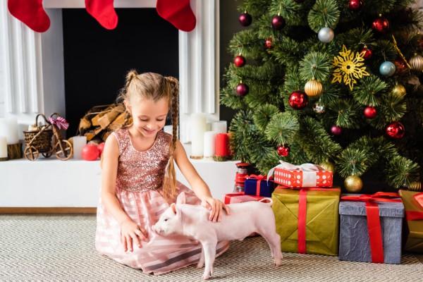 Желтая Свинья вступит в свои права 5 февраля 2019 года