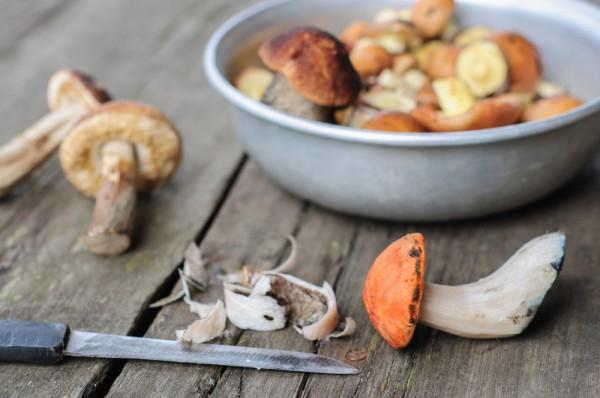 Как почистить лесные грибы