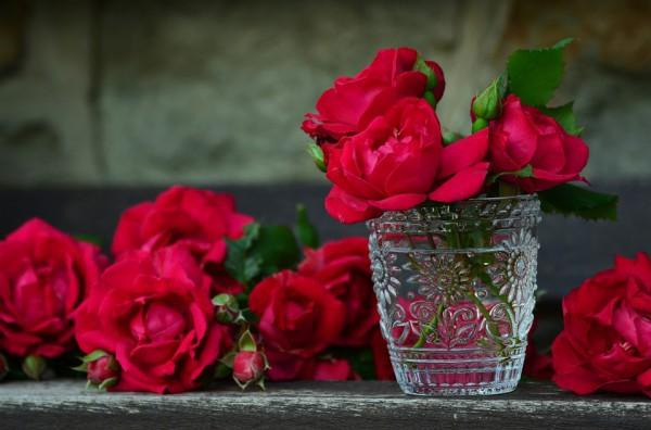 Красные розы нормализуют работу органов