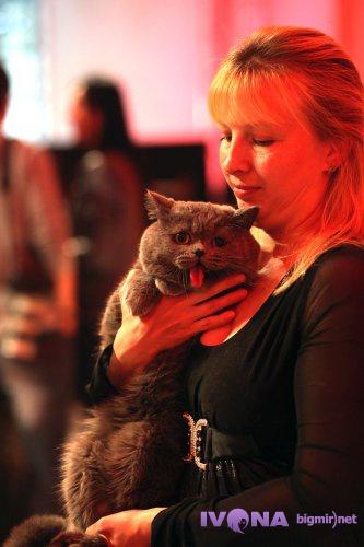 Женщина привела на показ кота