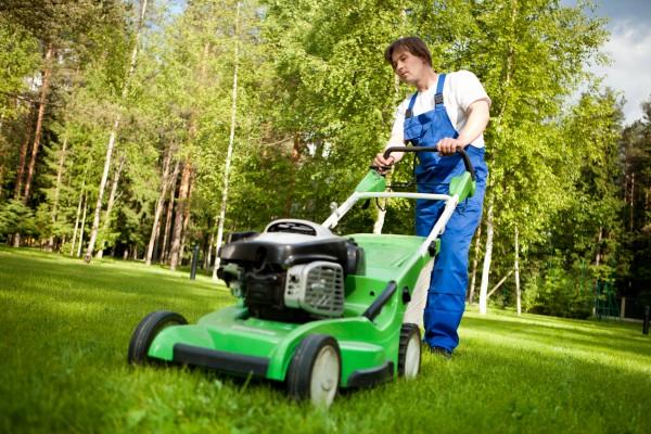 Как выбрать газонокосилку для загородного дома?