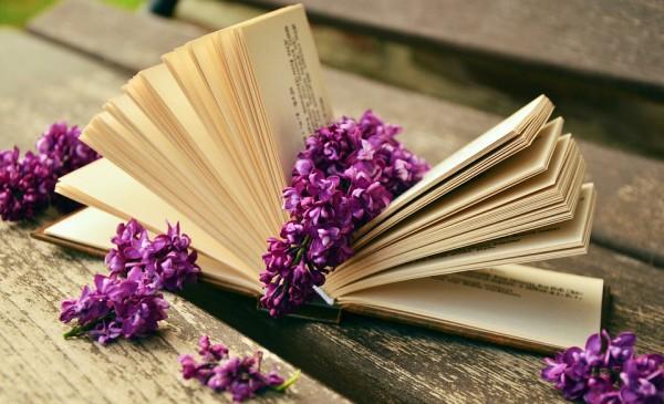 Избавляйся от неинтересных книг