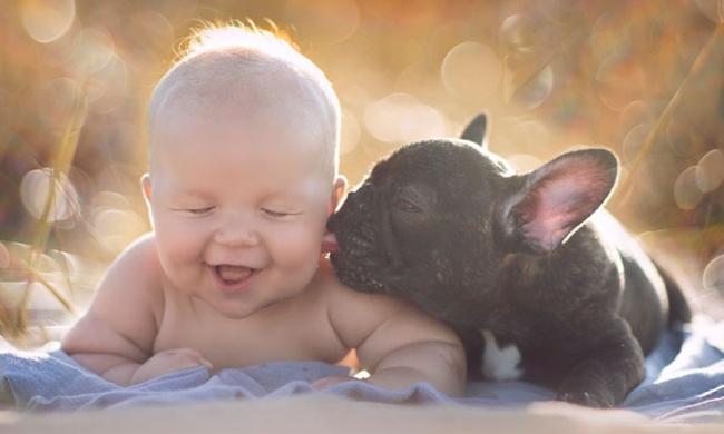 Когда настоящий друг – твой верный пес