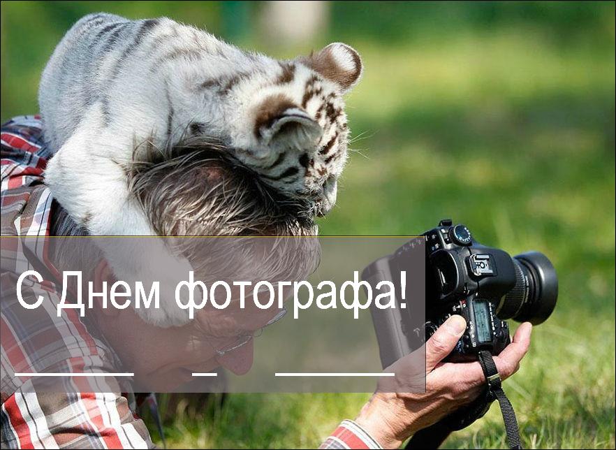 День фотографа: Поздравления