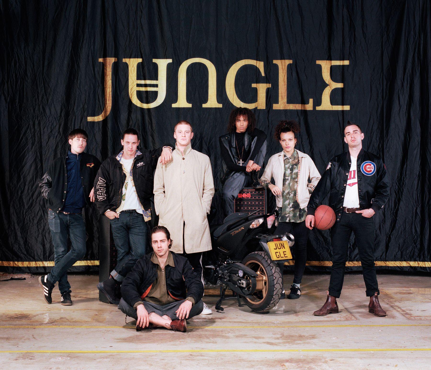 Концерт Jungle
