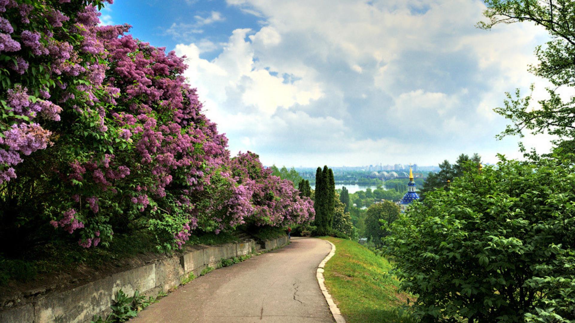 Ботанический сад имени Гришко